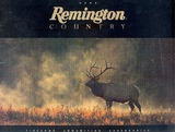 Remington_2000.pdf.jpg